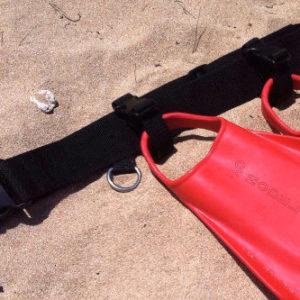 fin-belt